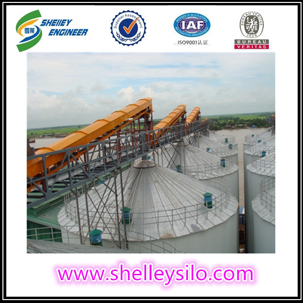 Horizontally tube chain conveyor systems price