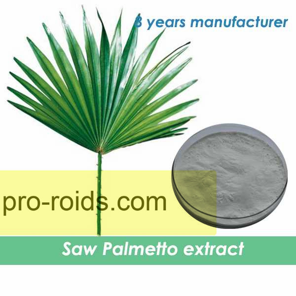100% Natural High Quality Saw Palmetto Extract Powder