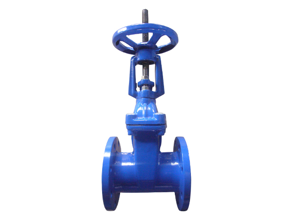 ISO/DIN Standard Rising Stem Cast Iron Gate Valve