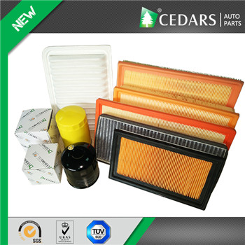 Original Chery Air Filter with SGS ISO 9001 Approved