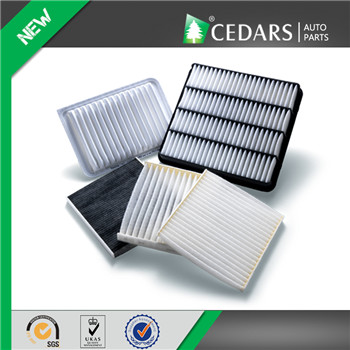 10 Years Experience Air Filter Wholesaler with OE Quality