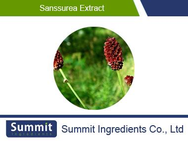Sanssurea extract5:1,Sanguisorba Officinalis L.Extract,Sanguisorba Root Extract