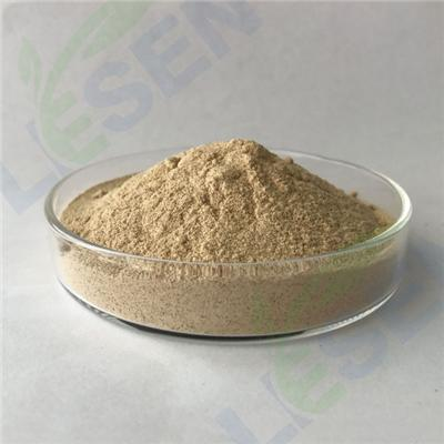 Jujube Powder