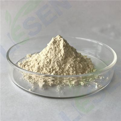 White Kidney Bean Powder