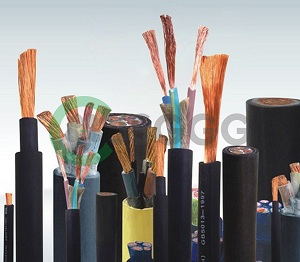 Rubber Cable (IEC)