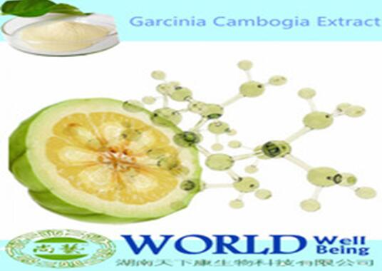 100% Natural Garcinia Cambogia Extract Lose Weight 10%-98%Hydroxy Citric acid(HCA)Organic Garcinia Cambogia Extract Powder