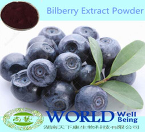 Factory Supply Bilberry Extract Powder10%- 25% Anthocyanidins Bilberry Powder/Bilberry Extract