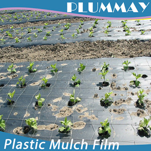 Good quality black agricultural mulching film