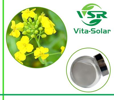 Rapeseed Phytosterol, Canola Oil Source Sterols 95%,90% Powder Suppliers
