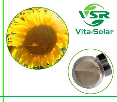 Sunflower Seeds Phosphatidylserine Supplement 50% Suppliers