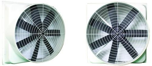 High Quality & Long Life FPR fan/Fiber Glass Fan for Poultry House/Chicken House/Greenhouse/Workshop