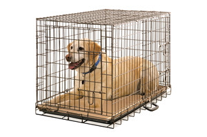Foladble Metal Wire Dog Cage 42x28x32