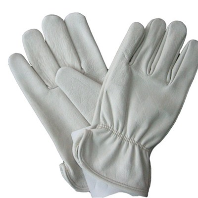 Hot Sale High Quality FACTORY SALE Cheap Prices Cow Leather Drivers Gloves