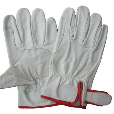 Good Quality Best Selling Pigskin Leather Driving Gloves New Style Leather Driving Gloves