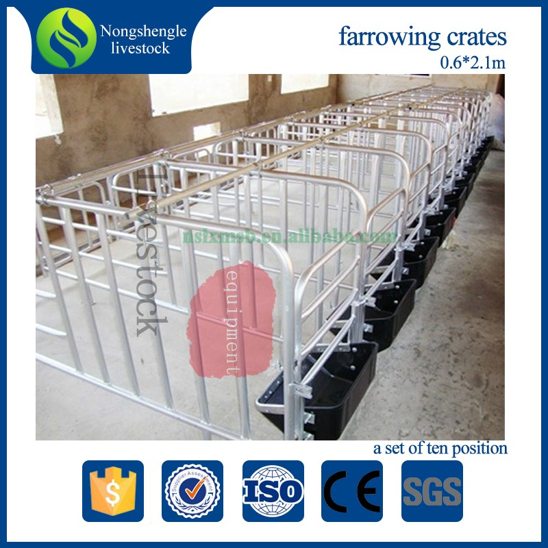 pig farming pen equipment breeding and gestation stalls
