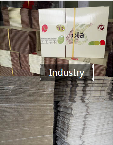 Industrial paper packing printing manufacturer