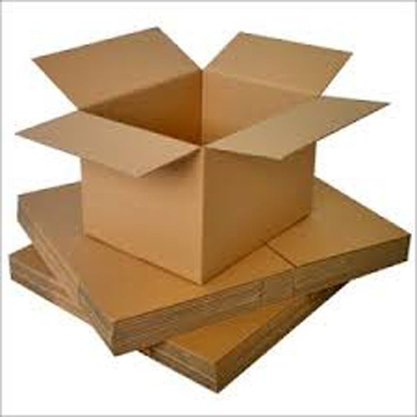 Double wall corrugated paper carton or mailing box