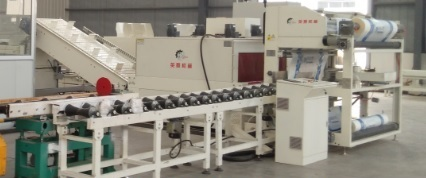 Non-standard automatic packaging machine