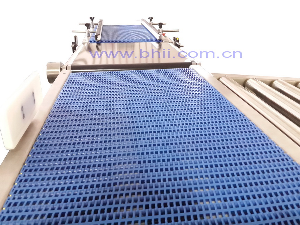 Heavy Duty Roller and Chain Belt Conveyor