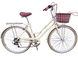 27 pama NEWSLAND lady speed bicycle wholesale discount manufacture bicycle parts supplier