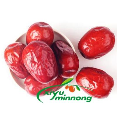 Dried Chinese red dates dry jujube jumbo Hetian large dried fruit organic natural whole sweet