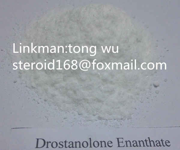 Best Quanlity Anabolic Hormone Steroid Drostanolone Enanthate