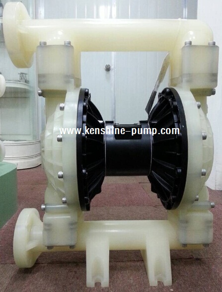 RW air operated double diaphragm pump