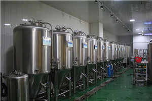 500L 5HL small micro craft beer brew fermentation tank machine supplier