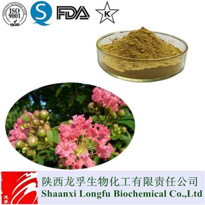 Best Banaba Leaf Extract/2% Corosolic Acid Powder