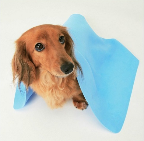Best Selling Professional Pet Dog Drying Bath Towel Cloth