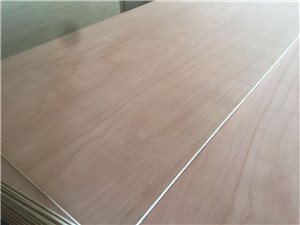 okoume plywood poplar core E1 and E0 glue furniture use