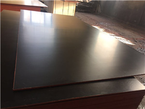 black film faced plywood poplar core or eucalyptus MEl glue construction use