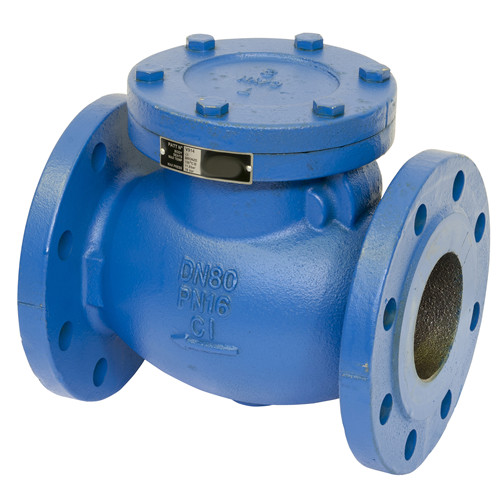 Fire fighting check valves and fittings
