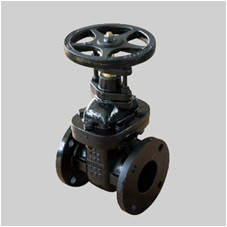 MSS SP 70 125S cast iron gate valve NRS solid wedge disc flanged ends