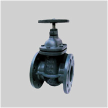EN 1171 PN10/PN16 F14 cast iron gate valve NRS solid wedge disc flanged ends