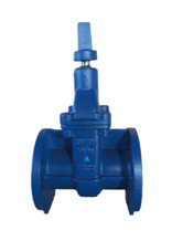 SABS 664 cast iron PN16 gate valve NRS solid wedge disc flanged ends