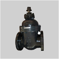 MSS SP 70 250S cast iron gate valve NRS solid wedge disc flanged ends
