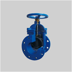 EN 1171 PN10/PN16 F3 ductile iron resilient seat gate valve NRS flanged ends