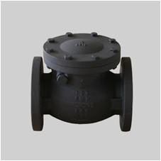 MSS SP 71 cast iron 125S swing check valve flanged ends