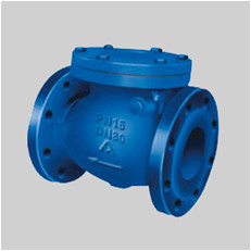 EN 12334 cast iron PN16 F10 swing check valve flanged ends