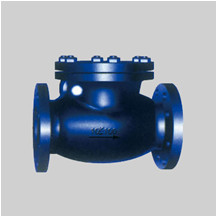 JIS F7372/73 cast iron 5K/10K swing check valve flanged ends