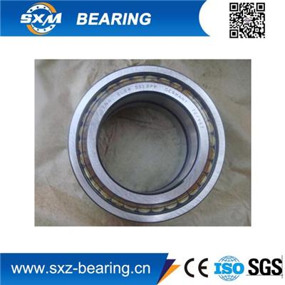 INA Full Cylindrical Roller Bearing