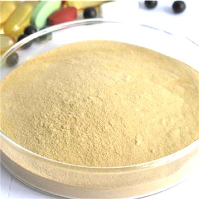 Burdock Tea Powder / Herbal Tea / Burdock Tea / Burdock Root Extract Powder