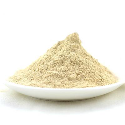 Onion Powder / Onion Extract powder / Dried Onion powder