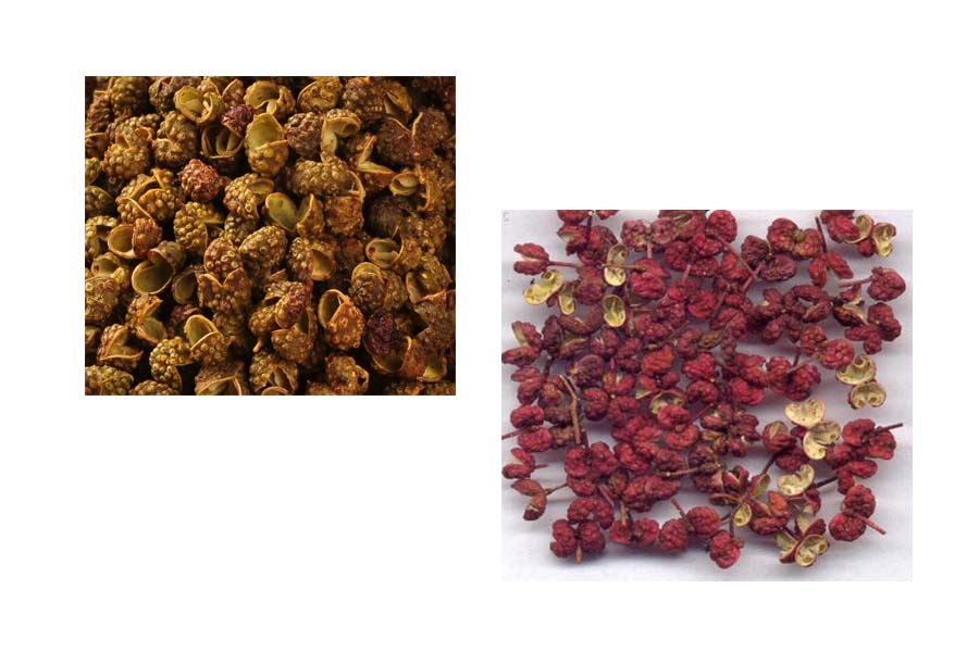 Natural Seasonging and condiment Sichuan pepper/Chinese prickly ash