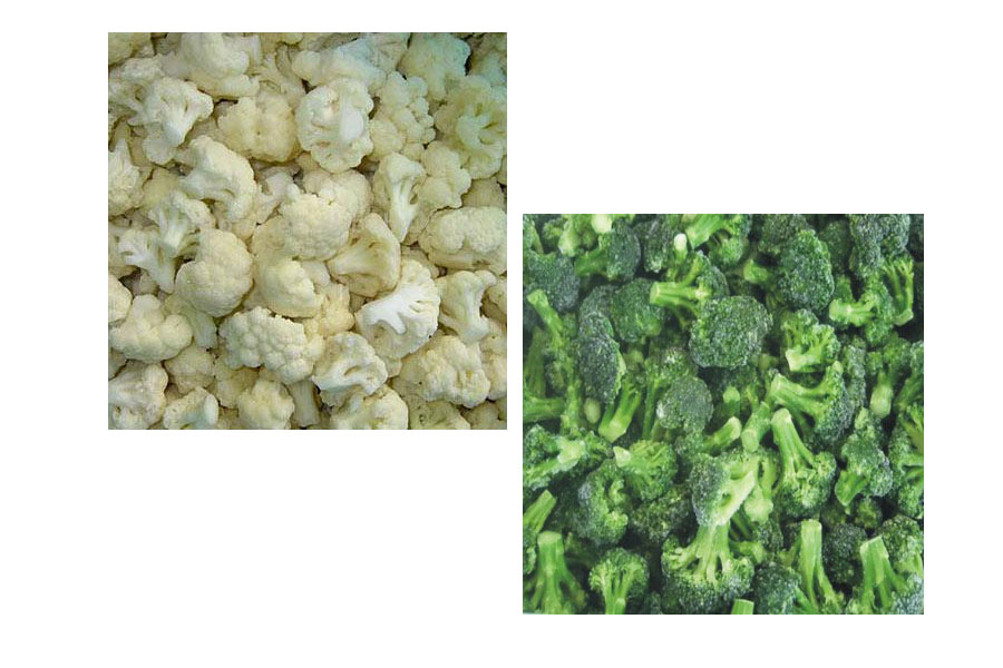 IQF/Frozen Chinese broccoli/cauliflower cut