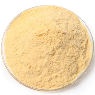 Papaya Powder / Papaya Extract / Pawpaw extract Powder / Pawpaw extract