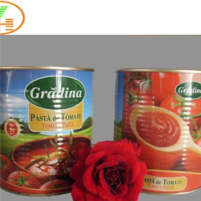 China Manufacturing Industry Tomato Paste in Canned Tin