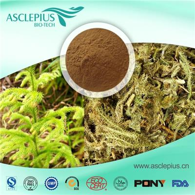 Lycopodium Extract Powder,light Lycopodium ,heavy Lycopodium Supplier Wholesale