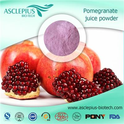 Pomegranate Juice Powder Pomegranate Extract Powder Supplier Wholesale